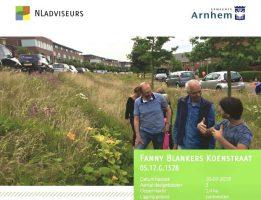Bijlage Arnhem bermbeheer FB Koenstraat 2019